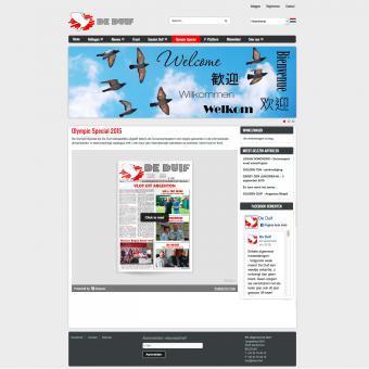 responsive drupal website met veilingen